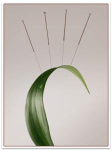 plant_acupuncture